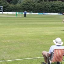 WPFG 2013: 2020 Cricket