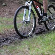 World class venue at Kilbroney Park for WPFG Mountain Biking